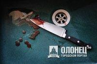 Двое лодейнопольцев попали в клинику с ножевыми ранениями