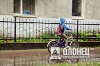 В Лодейнопольском районе задержали  педофила