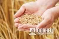 В Питкярантском районе обсудили вопросы состояния и развития агропромышленного комплекса