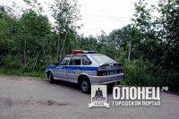 Житель Питкярантского района убил свою жену