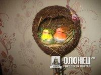 Как свить гнездо