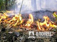 Контроль за пожарами в лесах Карелии!!!
