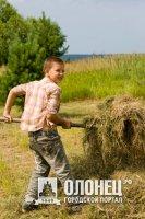 В Подпорожье собираются использовать труд детей